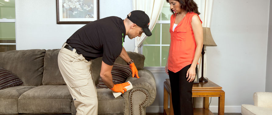 Harlingen, TX carpet upholstery cleaning
