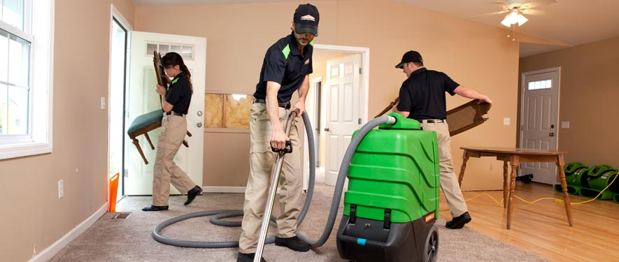 Harlingen, TX cleaning services